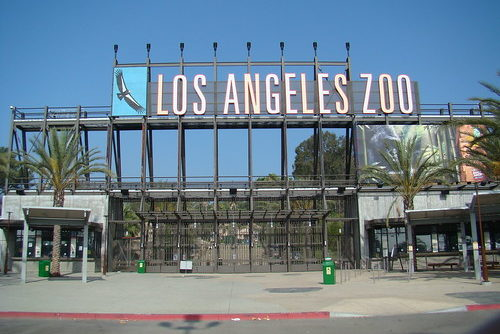 Hollywood Bowl LA Zoo Shuttle Bus